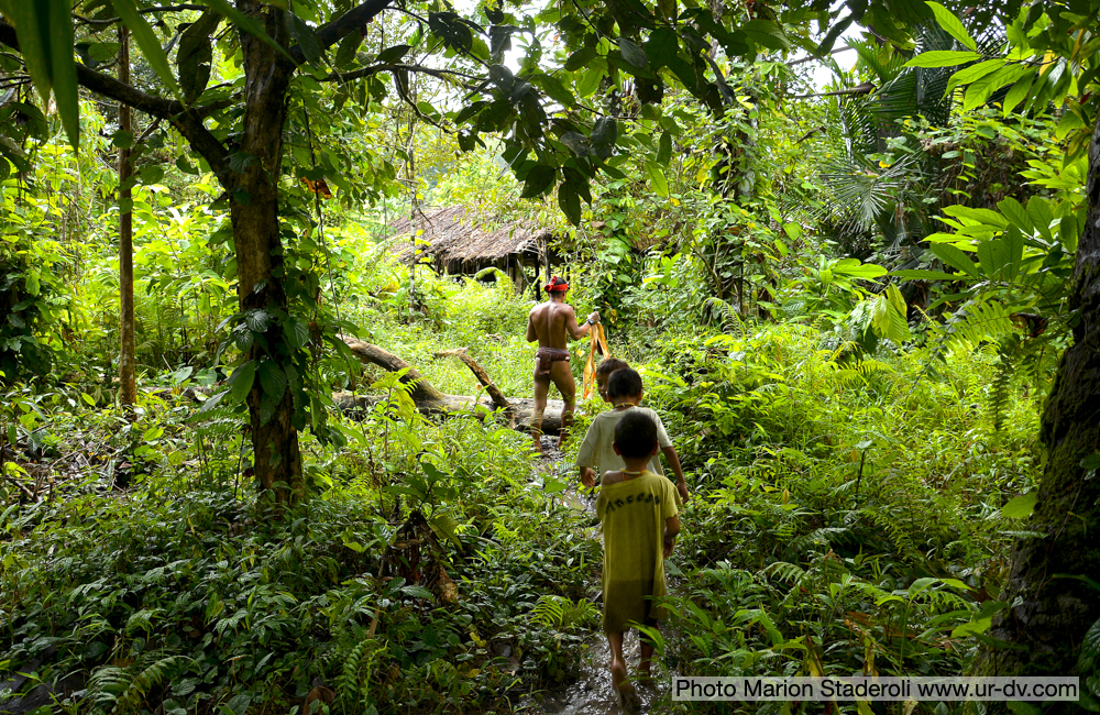 Mentawai Samba Lado 1