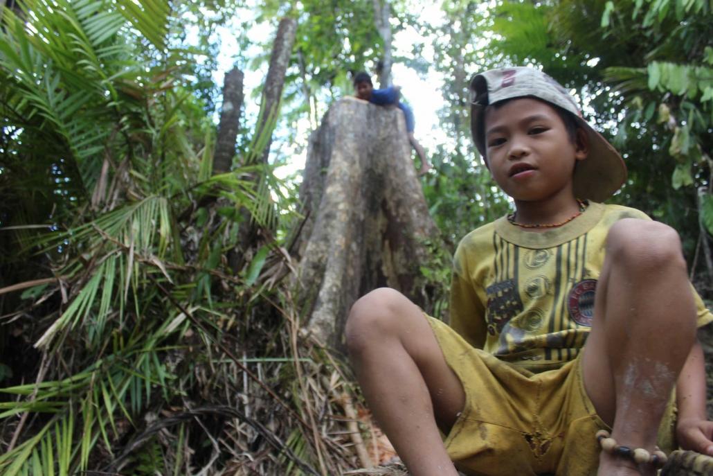 Mentawai Samba Lado 17
