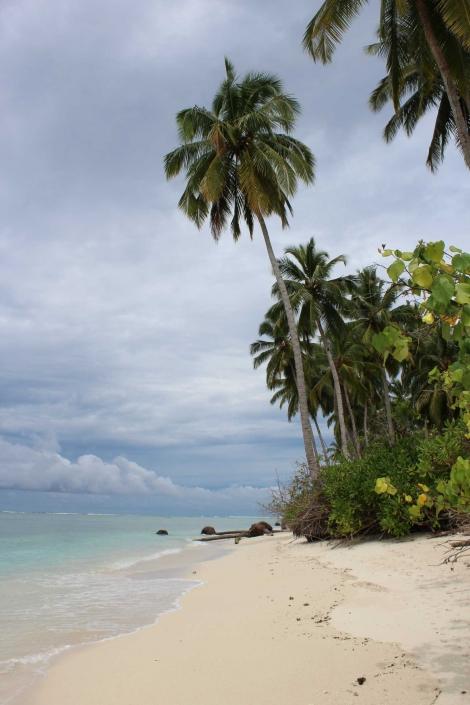 Mentawai Samba Lado 21