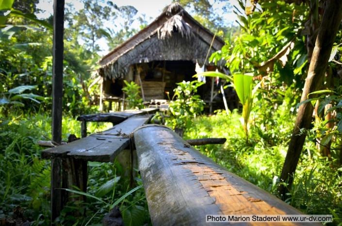 Mentawai Samba Lado 4