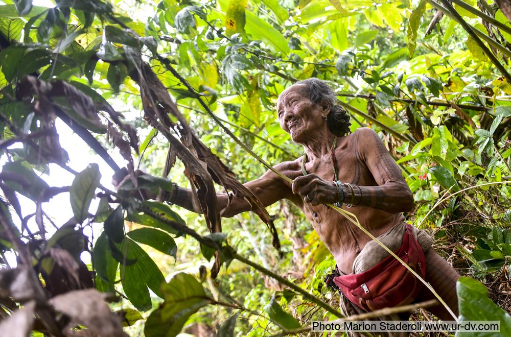 Mentawai Samba Lado 5