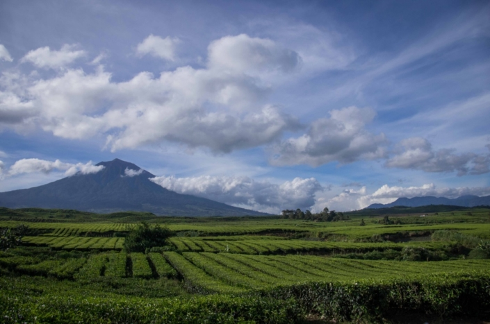 Volcan Kerinci Et Sa Région Samba Lado 2
